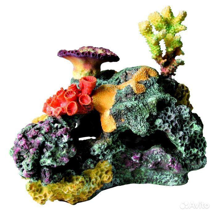 Кораллы, гроты, камни для аквариума купить на Зозу.ру - фотография № 1
