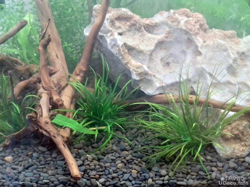 Грунт UDeco River Dark 5-9 мм 6 л, 9.9 кг купить на Зозу.ру - фотография № 3