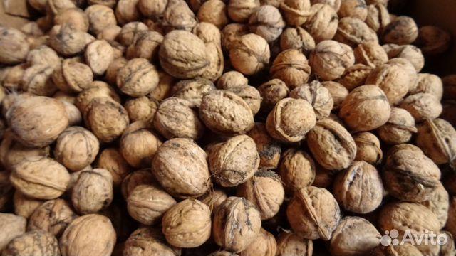предложений, грецкий орех продам в майкопе выгодные