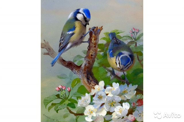 Painting by numbers 88422714282 buy 1