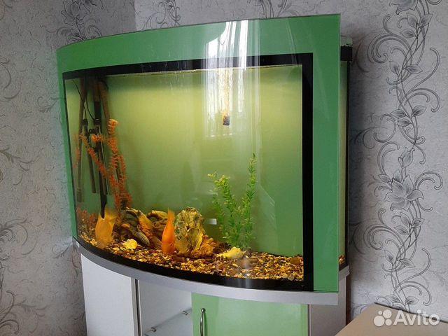 Akvarium 89292693505 köp 2