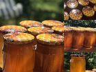 Мёд 2020 цветочный, разнотравие. Доставка на дом