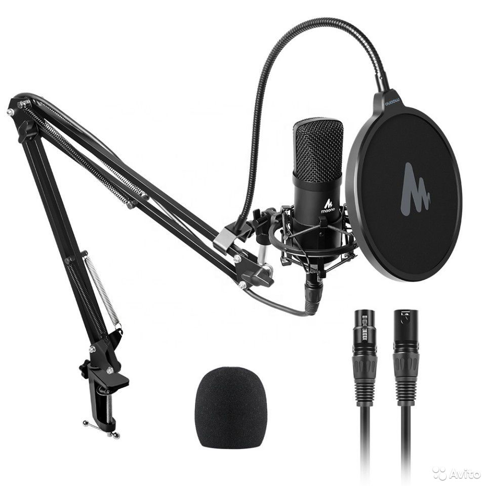 Microphone  89194183169 buy 1